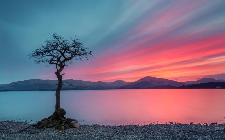 Sky_tree.water